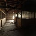 Urbex - Factory DN 17