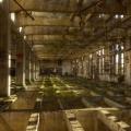 Urbex - Grands moulins de Paris