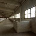 Urbex - G Factory 08