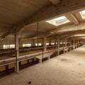 Urbex - G Factory 14