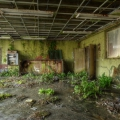 Urbex - Jungle School 05