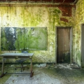 Urbex - Jungle School 16